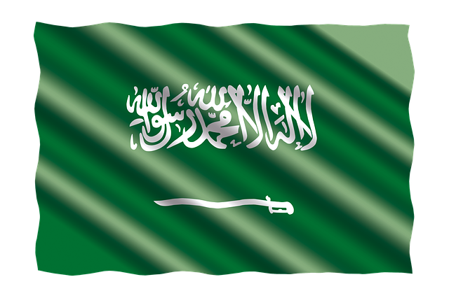 A Comprehensive Guide to Saudi Arabia Visas