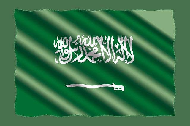Saudi Visa