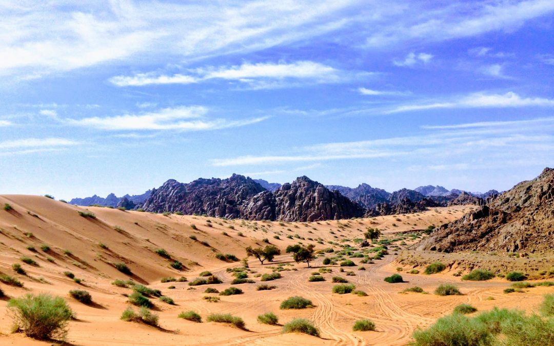 A Complete Travel Guide To Saudi Arabia- The Land on Sand