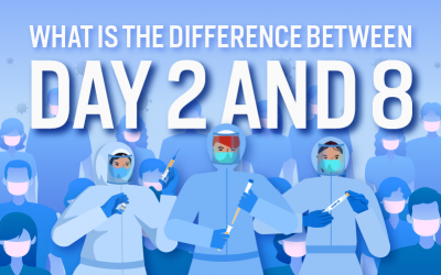 What Is the Difference Between Day 2 And 8 And Test to Release? [Infographic]